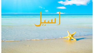 Photo of معنى اسم اسيل و هل يجوز تسمية به في الاسلام و اسماء مشاهير حاملي اسم اسيل