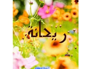 زهرة الريحان