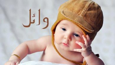 Photo of معنى اسم وائل و تفسير الاسم في المنام لابن سيرين
