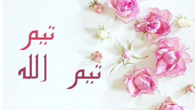 Photo of معنى اسم تيم او تيم الله و هل هو من الاسماء المحظورة شرعا ؟