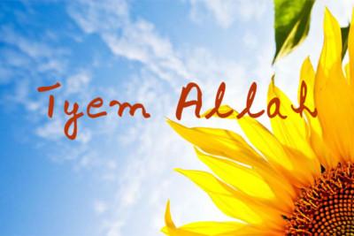 taym allah image