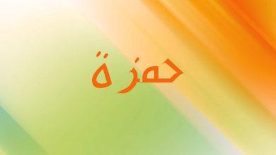 Photo of اسم حمزة و معناه