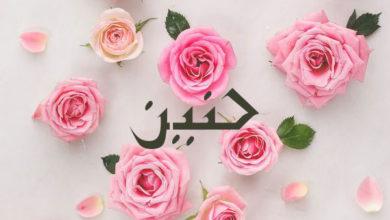 Photo of معنى اسم حنين و مميزاته