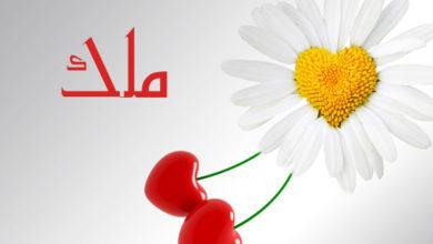 Photo of معنى اسم ملك و هل هو من الاسماء الغير مستحبة التسمية بها في الاسلام