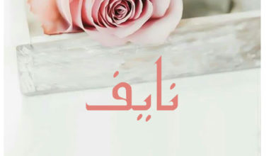 Photo of معنى اسم نايف