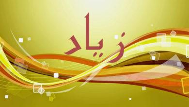 Photo of معنى اسم زياد