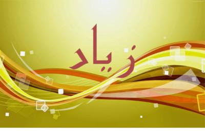 صورة لاسم زياد