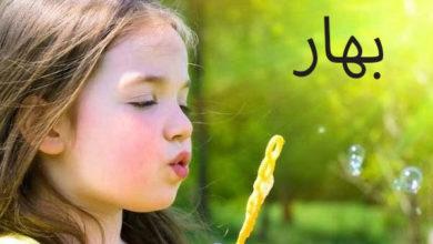 Photo of معنى اسم بهار