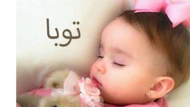Photo of معنى اسم توبا