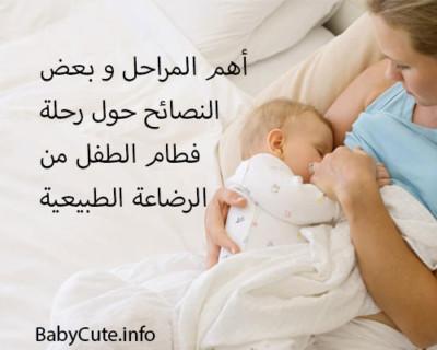 طريقة فطام الطفل من الرضاعة الطبيعية