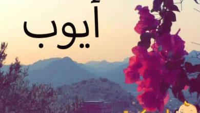 Photo of ما معنى اسم ايوب ؟و ما ميزة هذا الاسم ؟ و هل يجوز التسمية به في الاسلام