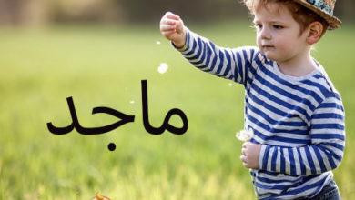 Photo of معنى اسم ماجد و مشاهيره