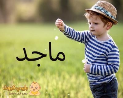 معاني و مشاهير اسم ماجد