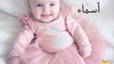 Photo of معنى اسم أسماء في الاسلام