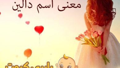 Photo of أصل اسم دالين و معناه