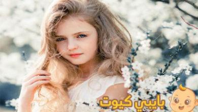 Photo of معنى اسم تغريد في المنام