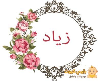 اسم زياد و معناه