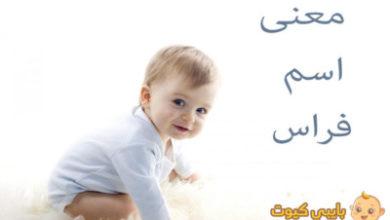 Photo of معنى اسم فراس