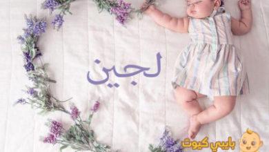 Photo of معنى اسم لجين و مشاهيره