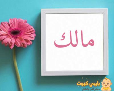 معنى اسم مالك بالعربي