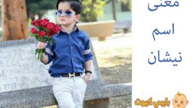 Photo of معنى اسم نيشان