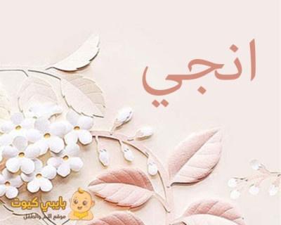 انجي بالعربية