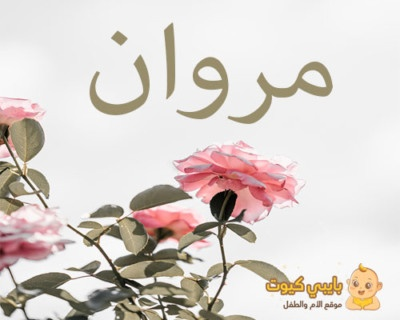 اسم مروان بالعربي
