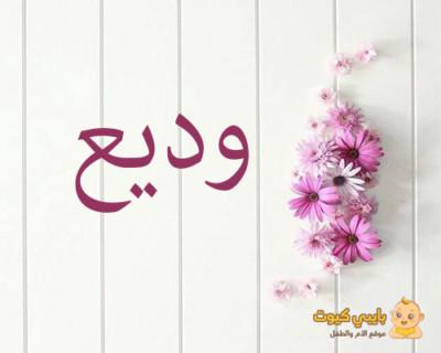 اسم وديع بالعربي