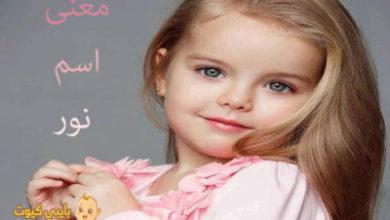 Photo of معنى اسم نور و مميزاته