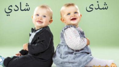 Photo of معنى اسم شذى