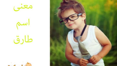 Photo of معنى اسم طارق في القرآن الكريم