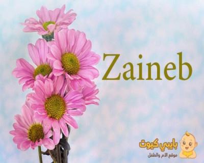 معنى اسم زينب بالانجليزي