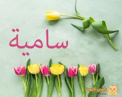 تفسير اسم سامية بالعربية