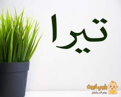 ما معنى اسم تيرا بالعربي