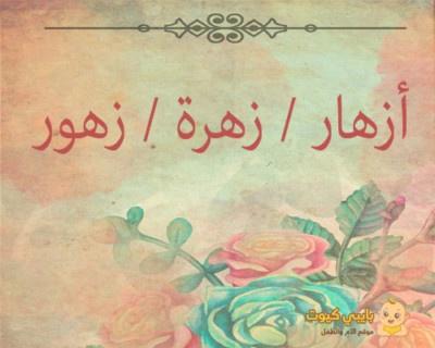 اسم من الطبيعة : أزهار/زهرة/زهور